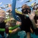 Family Reef Day Tour