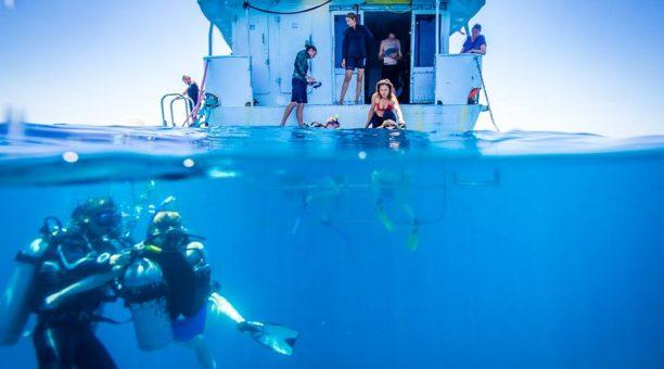 Compass Back deck diving fun